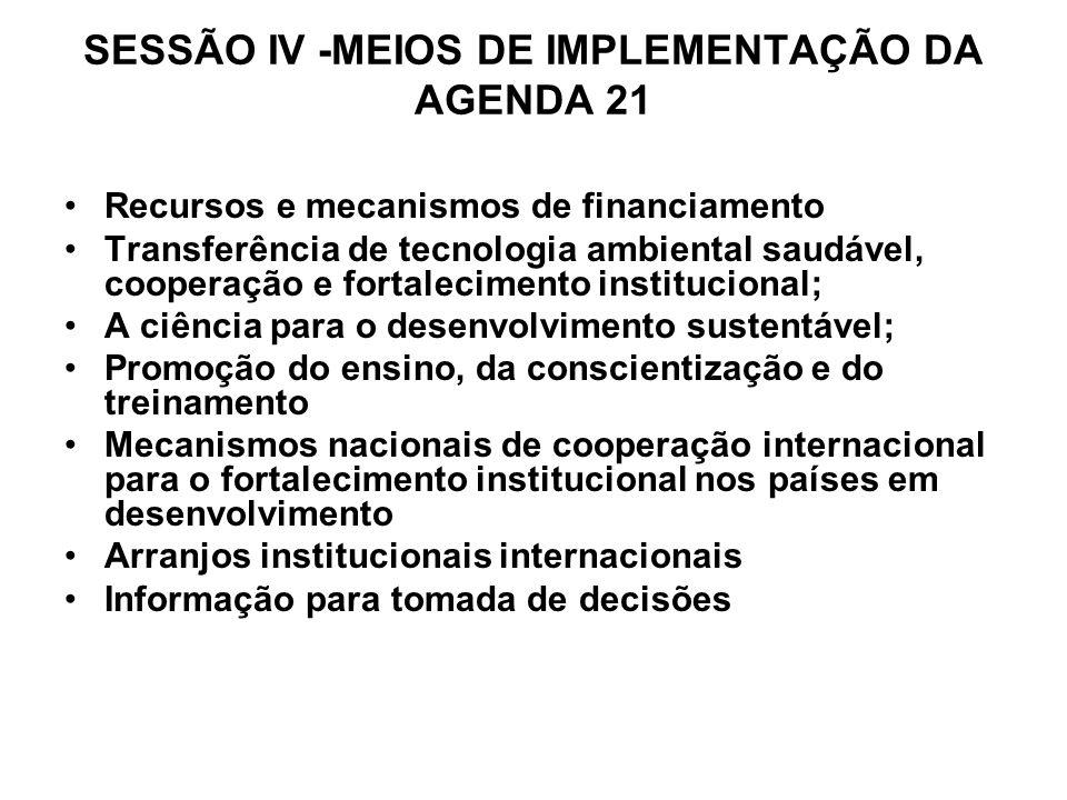 SESSÃO IV -MEIOS DE IMPLEMENTAÇÃO DA AGENDA 21