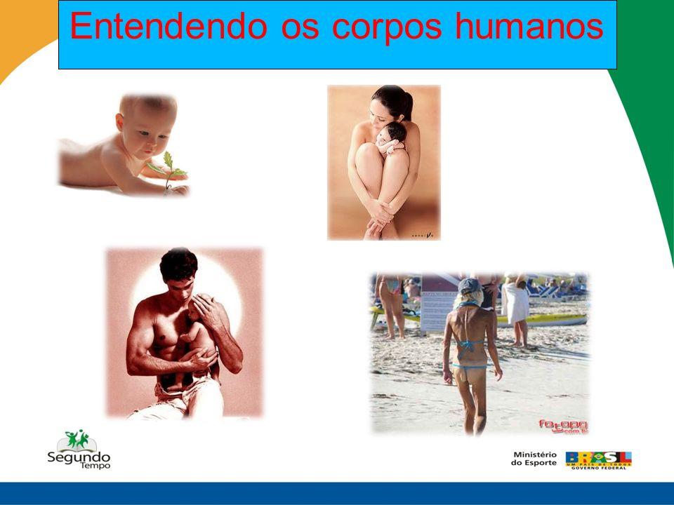 Entendendo os corpos humanos