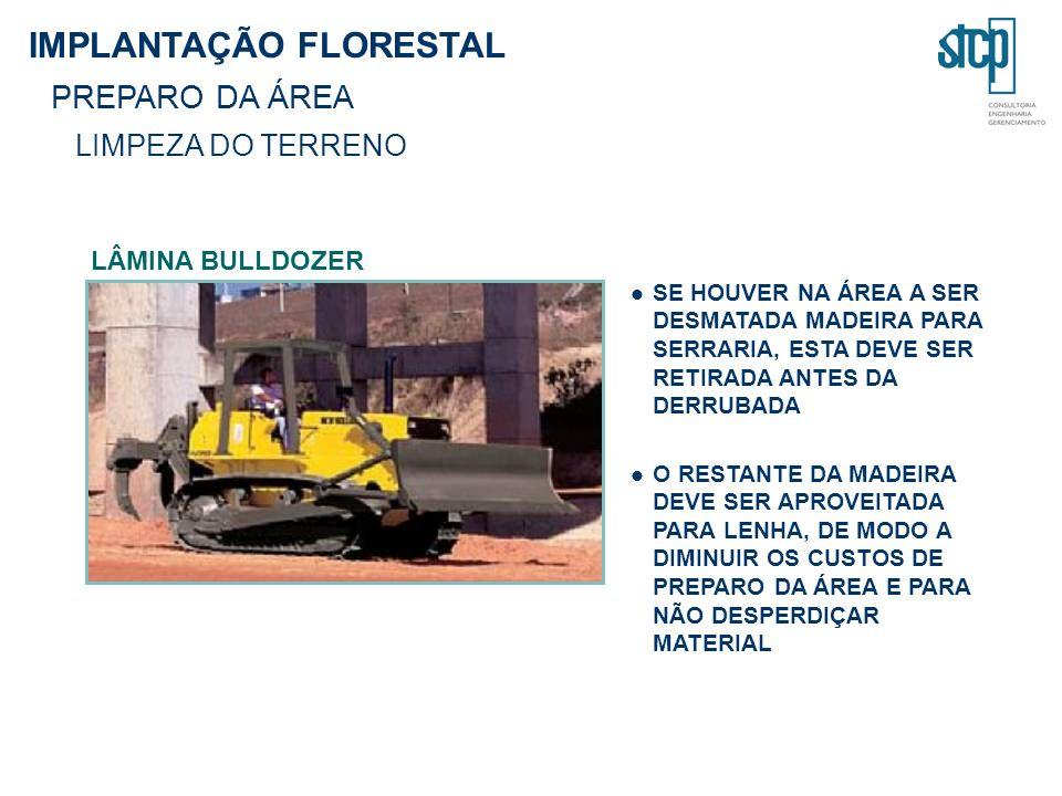 IMPLANTAÇÃO FLORESTAL PREPARO DA ÁREA