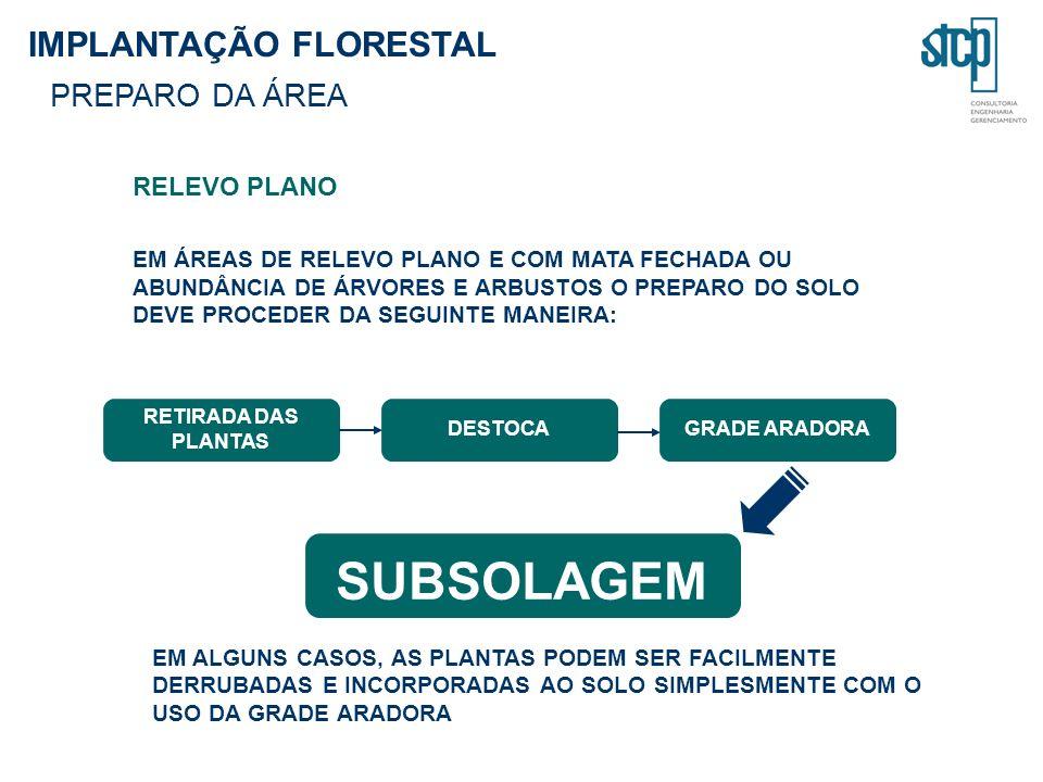 SUBSOLAGEM IMPLANTAÇÃO FLORESTAL PREPARO DA ÁREA RELEVO PLANO