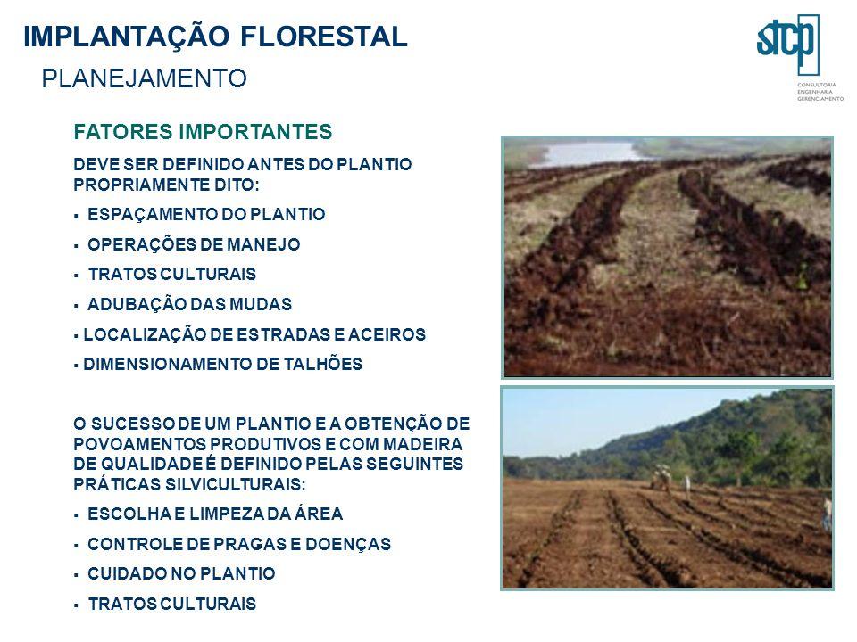 IMPLANTAÇÃO FLORESTAL PLANEJAMENTO
