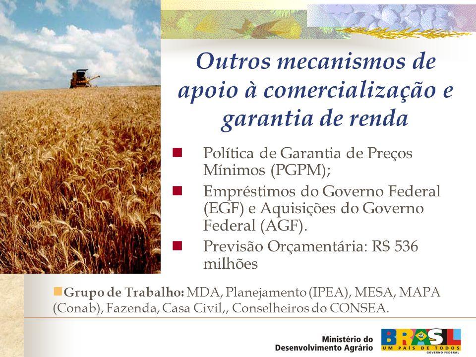 Outros mecanismos de apoio à comercialização e garantia de renda