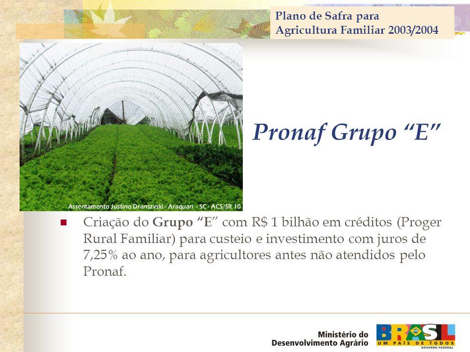 Plano de Safra para Agricultura Familiar 2003/2004