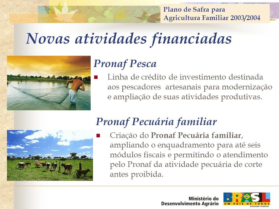 Novas atividades financiadas