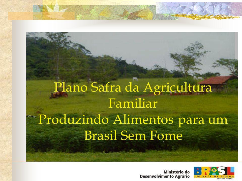 Plano Safra da Agricultura Familiar Produzindo Alimentos para um Brasil Sem Fome