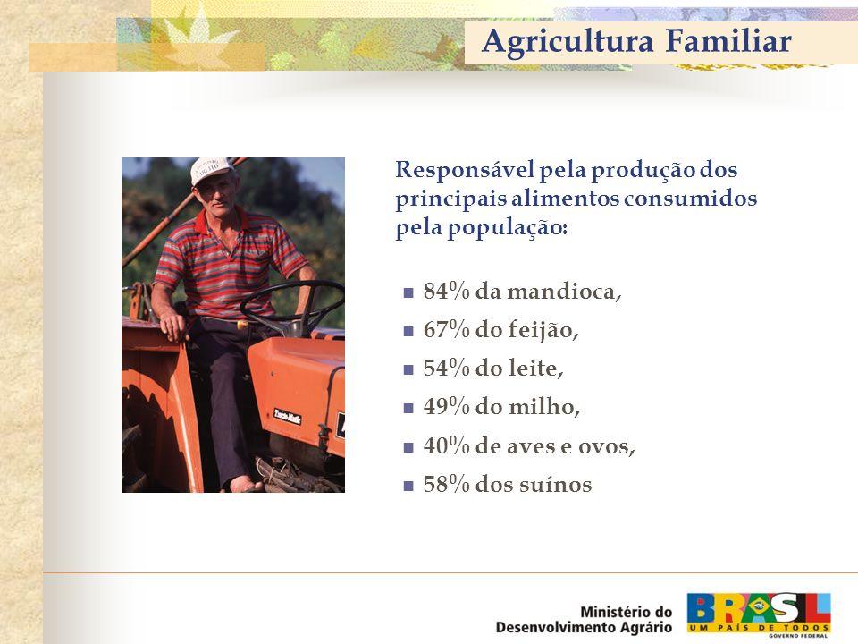 Agricultura Familiar Responsável pela produção dos principais alimentos consumidos pela população: 84% da mandioca,