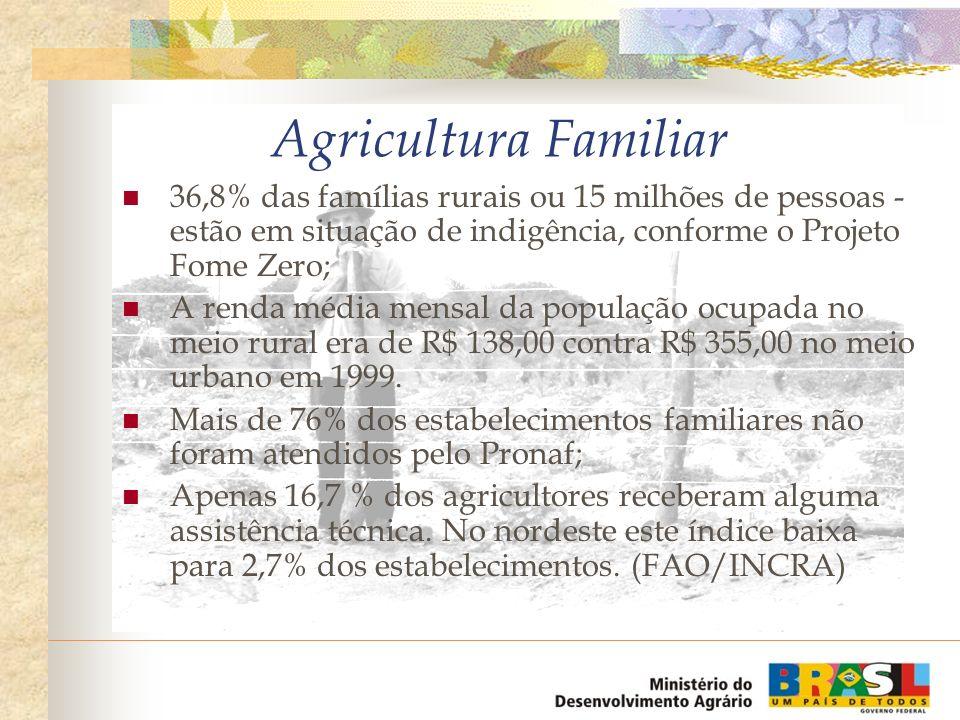 Agricultura Familiar 36,8% das famílias rurais ou 15 milhões de pessoas - estão em situação de indigência, conforme o Projeto Fome Zero;