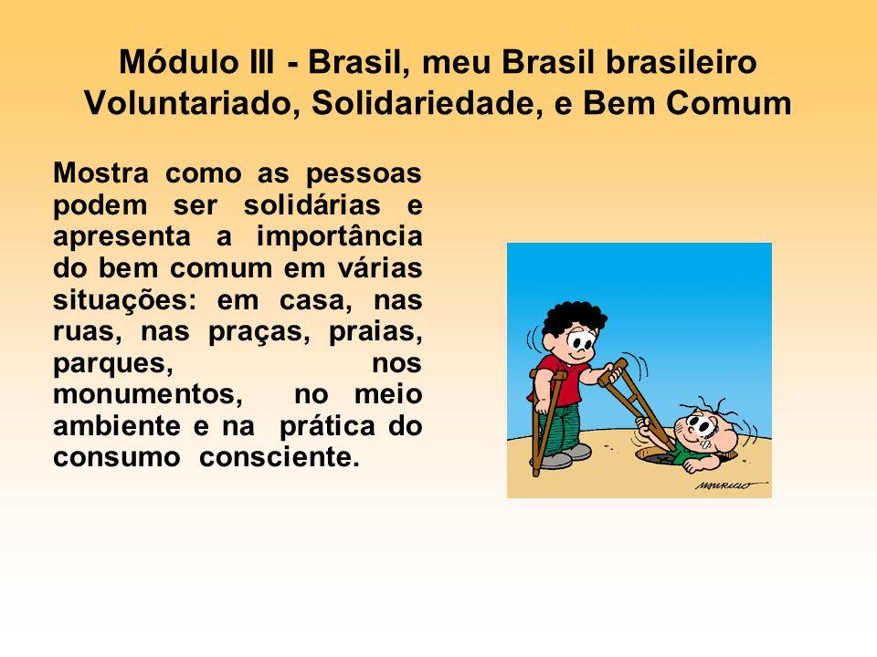 Módulo III - Brasil, meu Brasil brasileiro Voluntariado, Solidariedade, e Bem Comum