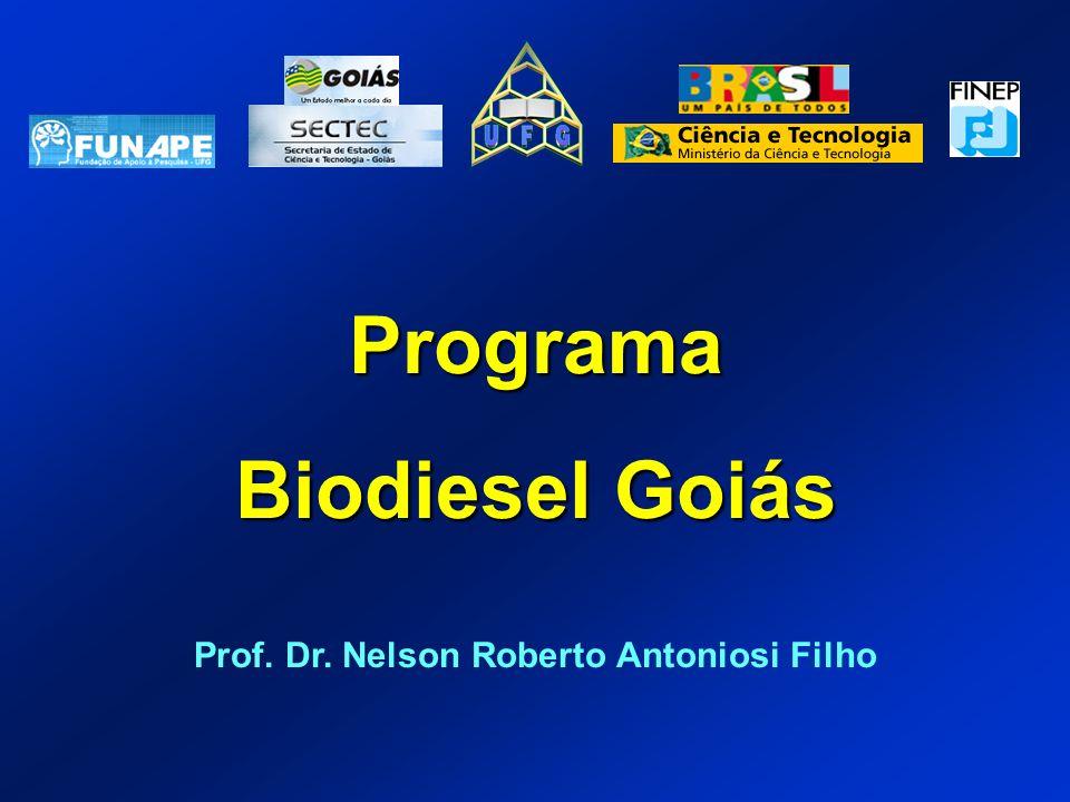 Prof. Dr. Nelson Roberto Antoniosi Filho