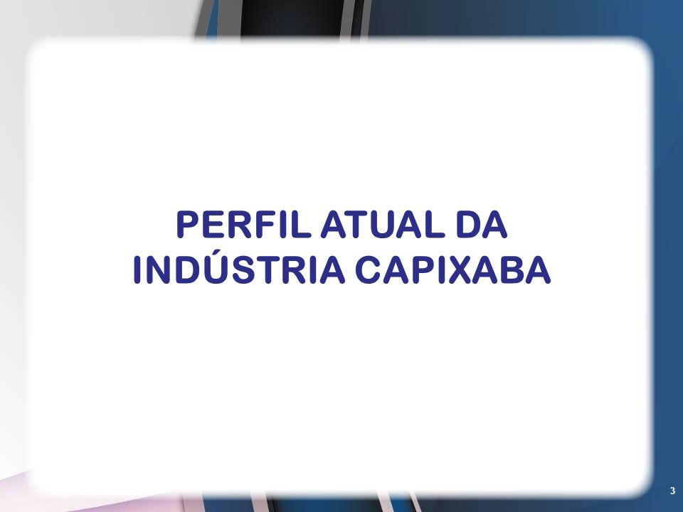 PERFIL ATUAL DA INDÚSTRIA CAPIXABA