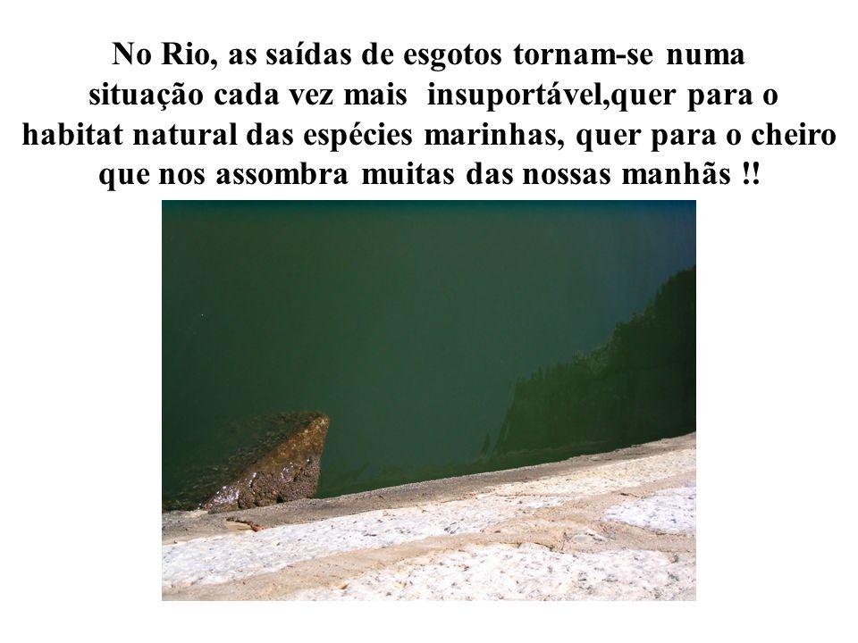 No Rio, as saídas de esgotos tornam-se numa