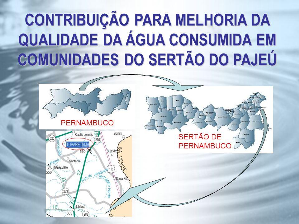 CONTRIBUIÇÃO PARA MELHORIA DA QUALIDADE DA ÁGUA CONSUMIDA EM COMUNIDADES DO SERTÃO DO PAJEÚ