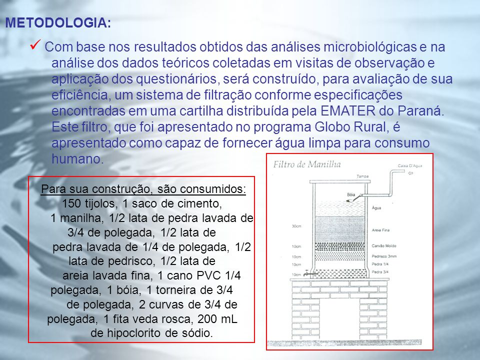 Com base nos resultados obtidos das análises microbiológicas e na