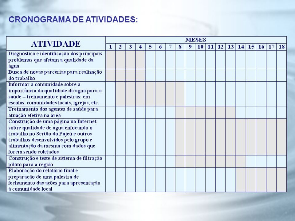 CRONOGRAMA DE ATIVIDADES: