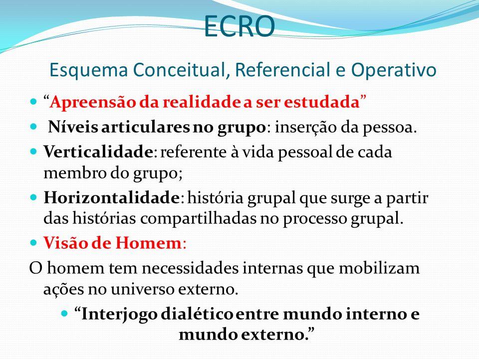 ECRO Esquema Conceitual, Referencial e Operativo