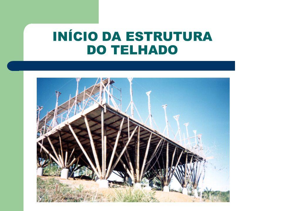 INÍCIO DA ESTRUTURA DO TELHADO