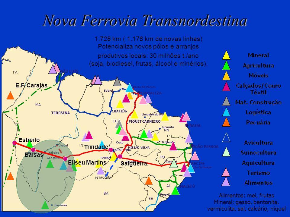 Nova Ferrovia Transnordestina
