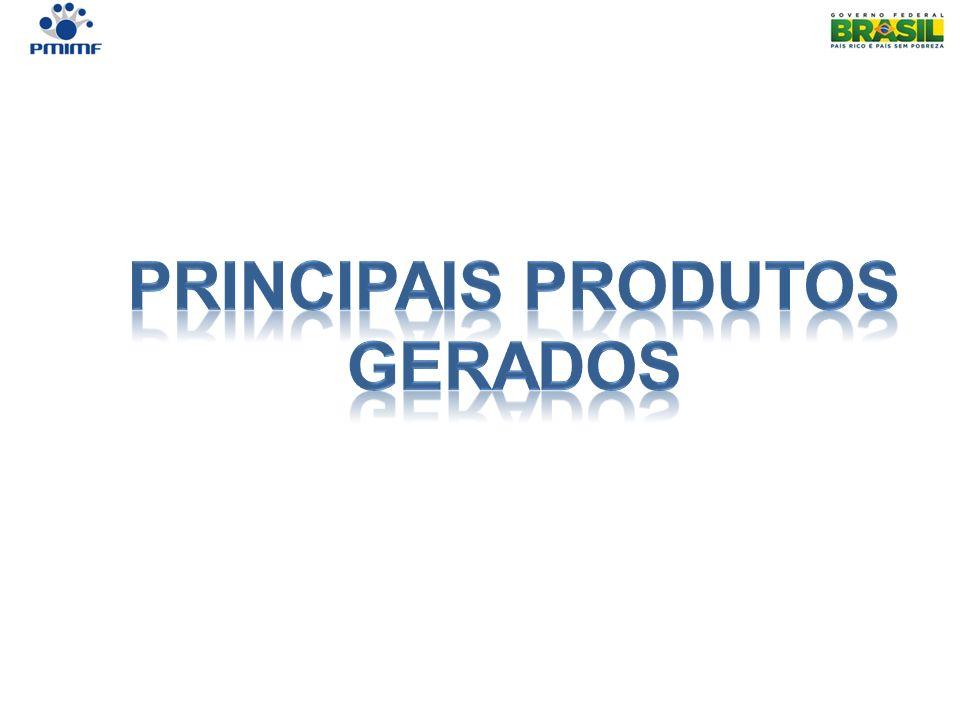 Principais Produtos gerados