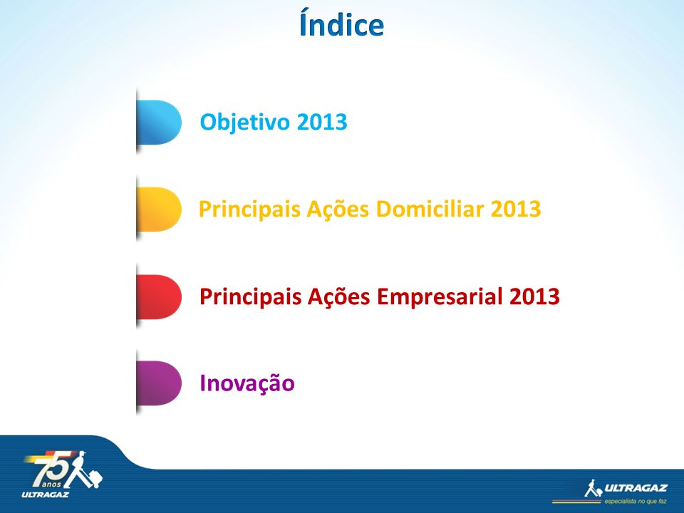 Índice Objetivo 2013 Principais Ações Domiciliar 2013
