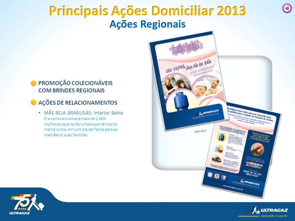 Principais Ações Domiciliar 2013
