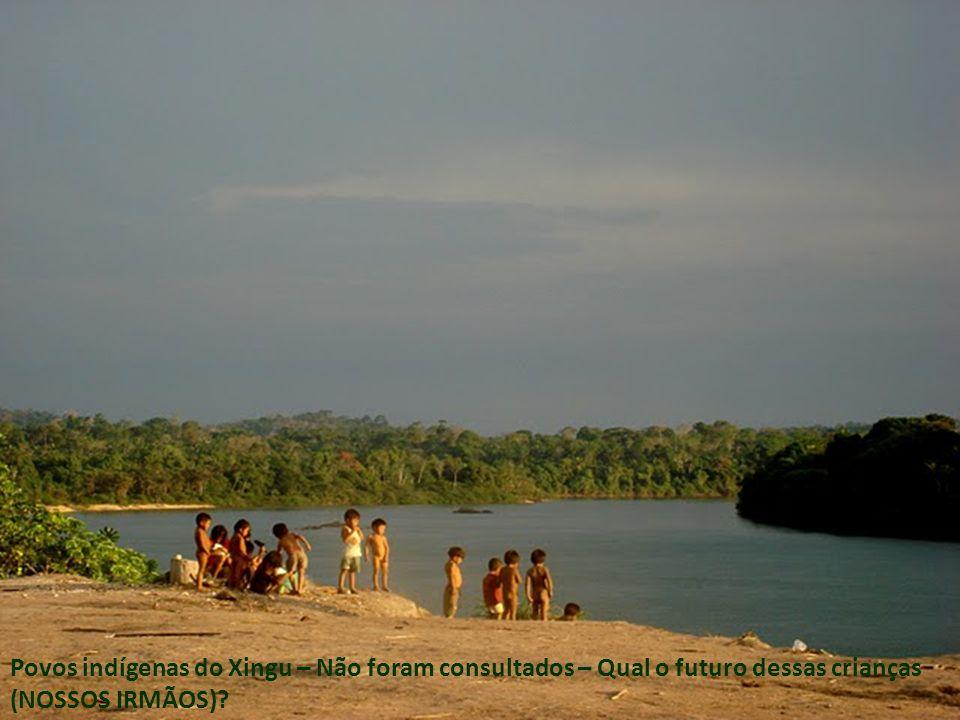 Povos indígenas do Xingu – Não foram consultados – Qual o futuro dessas crianças (NOSSOS IRMÃOS)