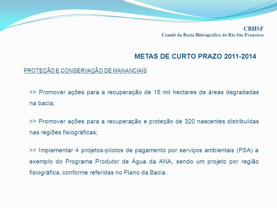 METAS DE CURTO PRAZO 2011-2014 CBHSF