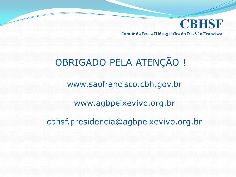 CBHSF OBRIGADO PELA ATENÇÃO ! www.saofrancisco.cbh.gov.br