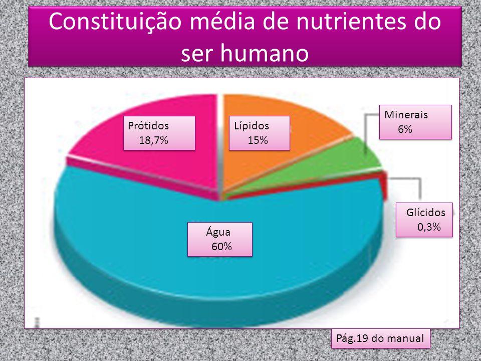 Constituição média de nutrientes do ser humano