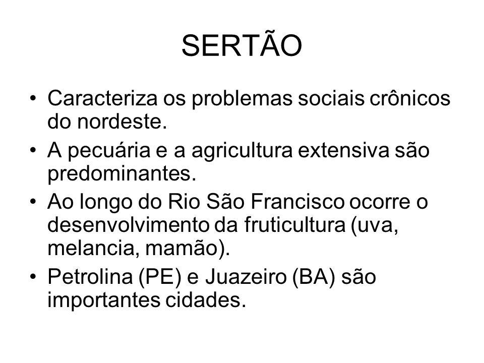 SERTÃO Caracteriza os problemas sociais crônicos do nordeste.