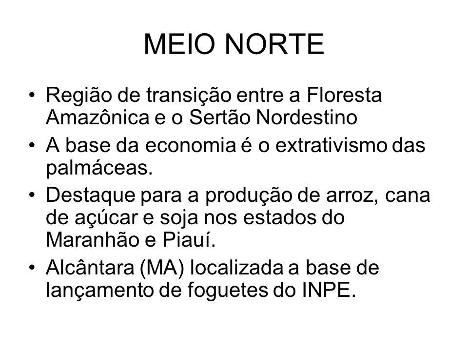 MEIO NORTE Região de transição entre a Floresta Amazônica e o Sertão Nordestino. A base da economia é o extrativismo das palmáceas.