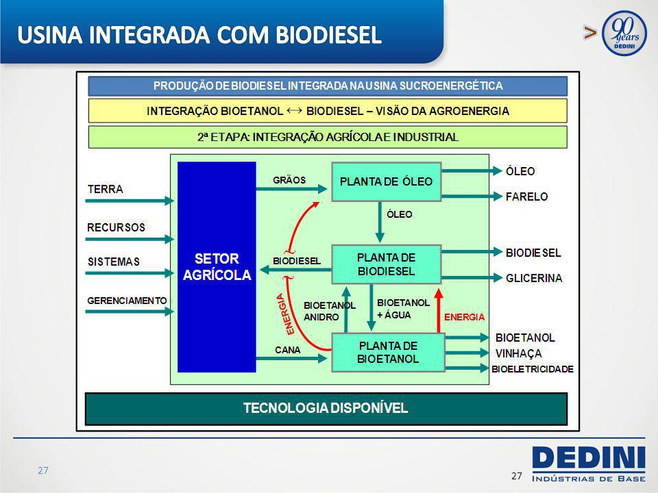 USINA INTEGRADA COM BIODIESEL