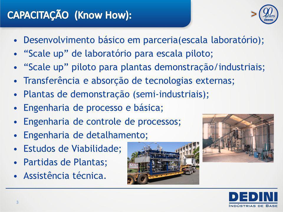 CAPACITAÇÃO (Know How):