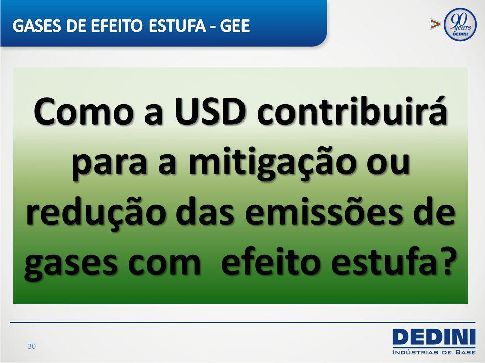 GASES DE EFEITO ESTUFA - GEE