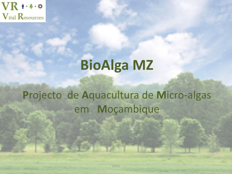 Projecto de Aquacultura de Micro-algas
