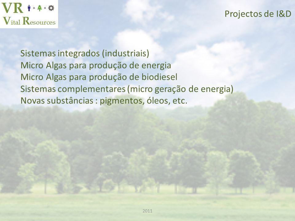 Sistemas integrados (industriais) Micro Algas para produção de energia