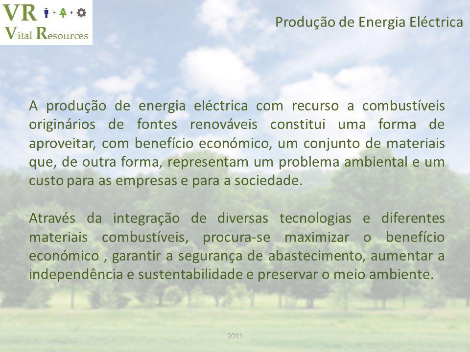 Produção de Energia Eléctrica