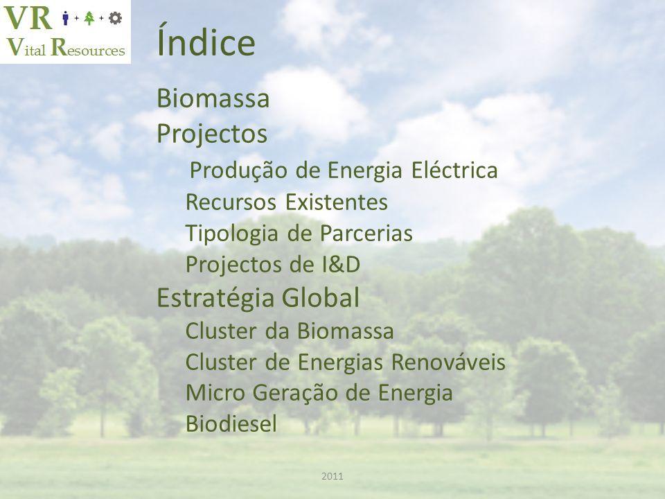 Índice Biomassa Projectos Produção de Energia Eléctrica