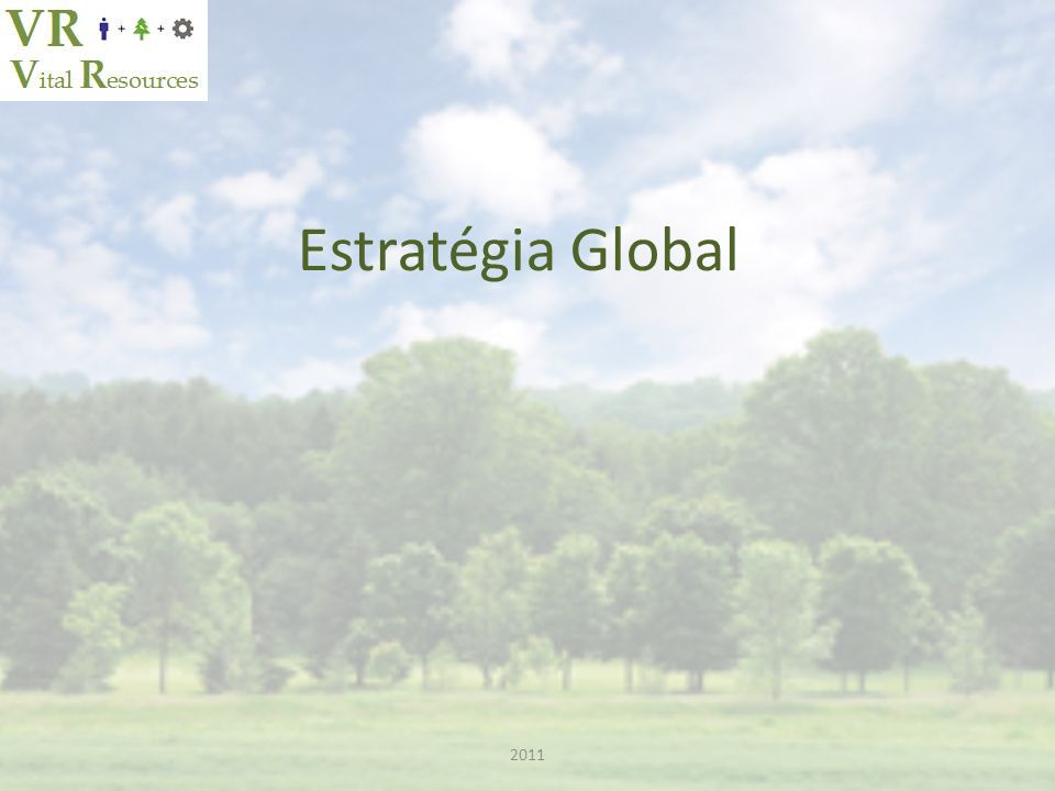 Estratégia Global 2011