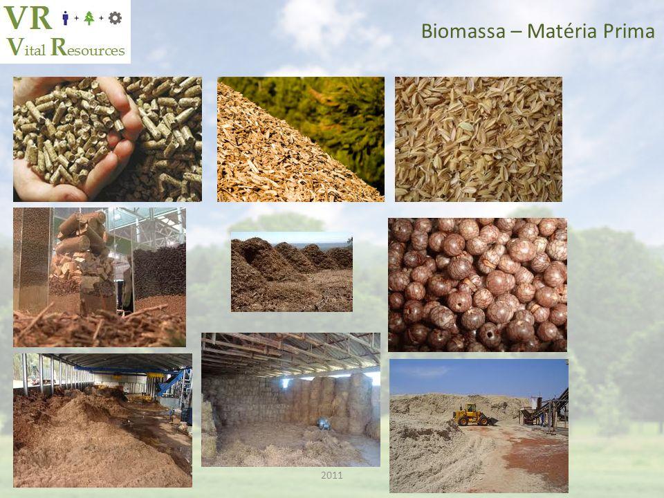 Biomassa – Matéria Prima