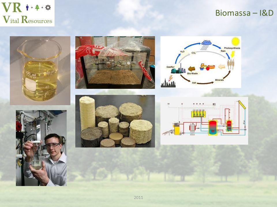 Biomassa – I&D 2011