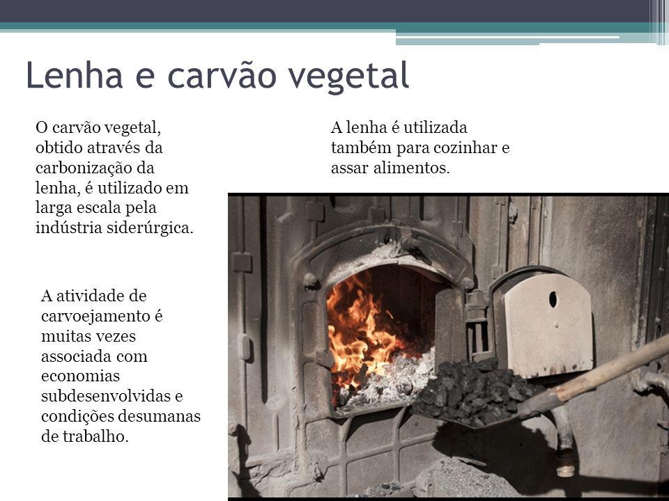 Lenha e carvão vegetal O carvão vegetal, obtido através da carbonização da lenha, é utilizado em larga escala pela indústria siderúrgica.