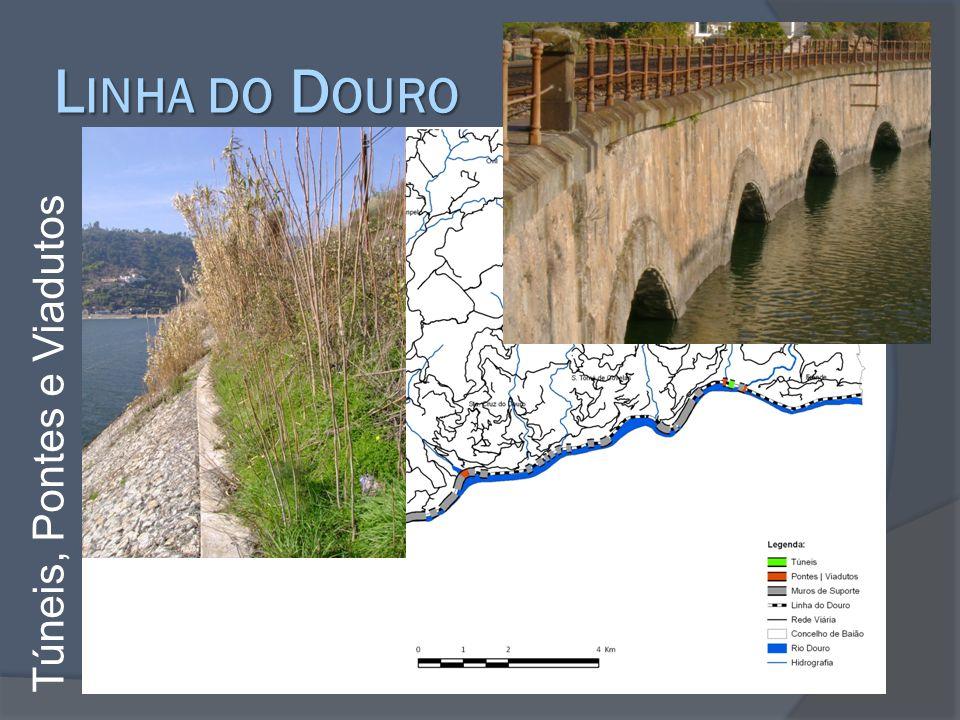 Linha do Douro Túneis, Pontes e Viadutos