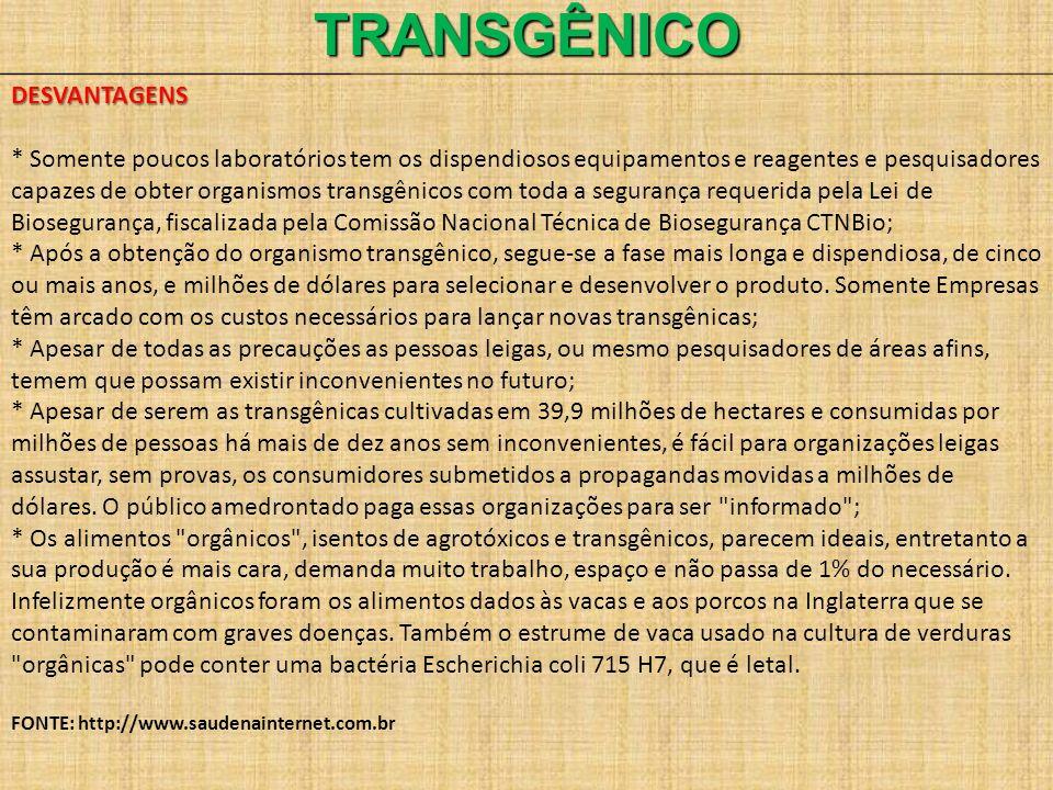 TRANSGÊNICO DESVANTAGENS