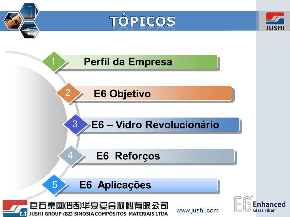 E6 – Vidro Revolucionário