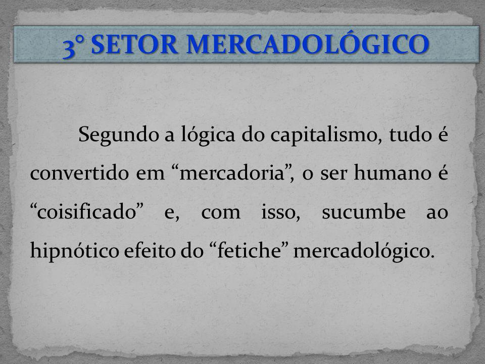 3° SETOR MERCADOLÓGICO