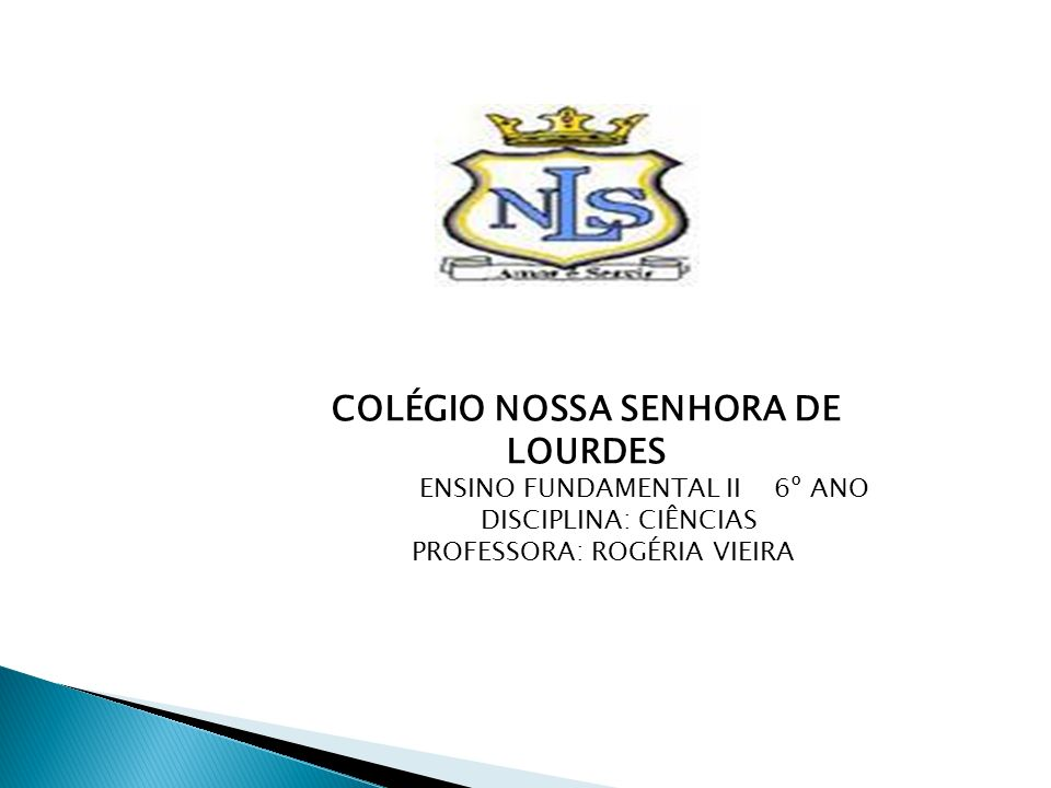 COLÉGIO NOSSA SENHORA DE LOURDES ENSINO FUNDAMENTAL II 6º ANO