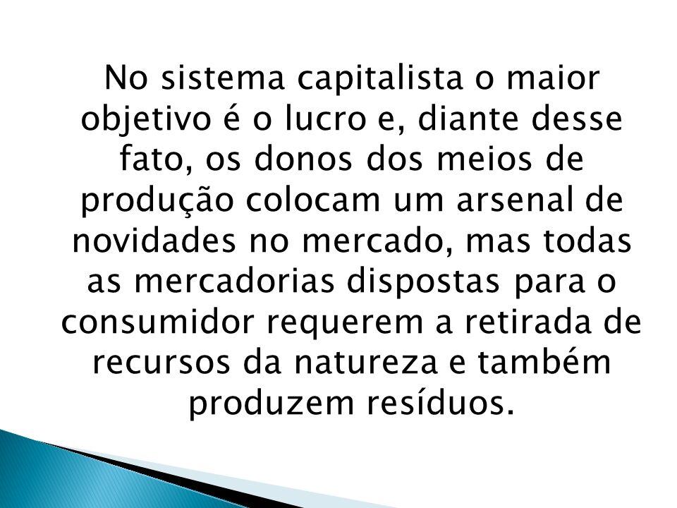 No sistema capitalista o maior objetivo é o lucro e, diante desse fato, os donos dos meios de produção colocam um arsenal de novidades no mercado, mas todas as mercadorias dispostas para o consumidor requerem a retirada de recursos da natureza e também produzem resíduos.