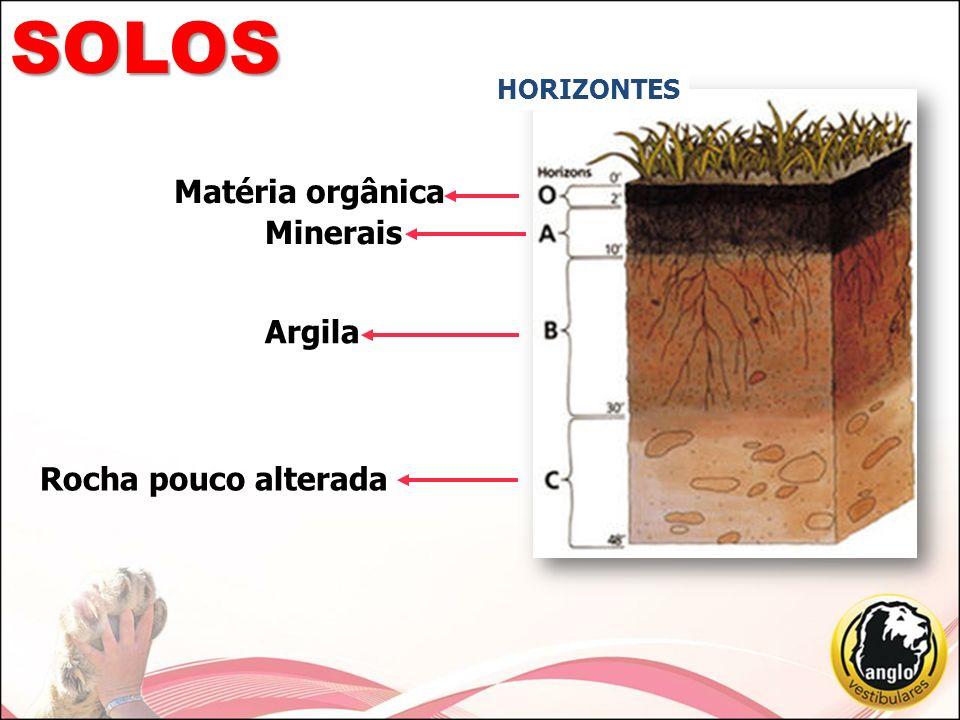 SOLOS HORIZONTES Matéria orgânica Minerais Argila Rocha pouco alterada