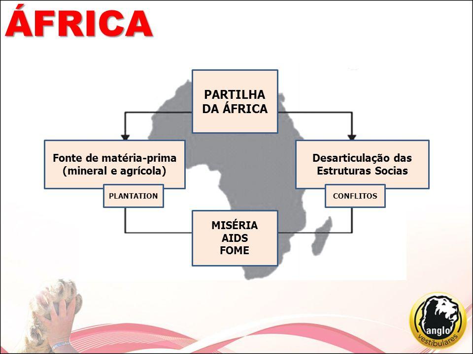 ÁFRICA PARTILHA DA ÁFRICA Fonte de matéria-prima (mineral e agrícola)