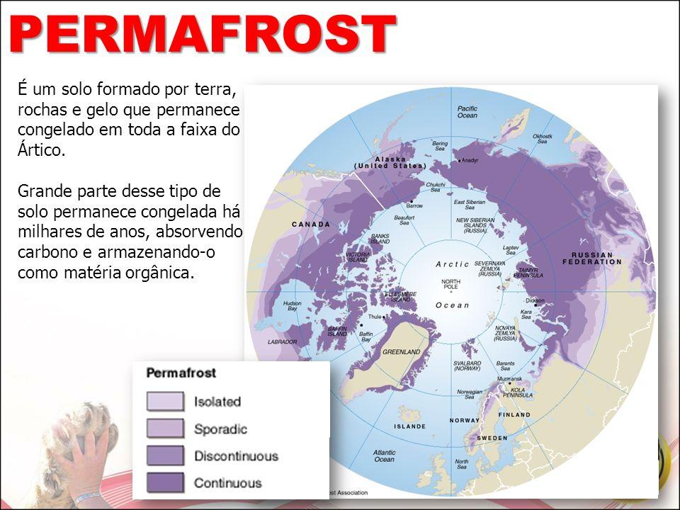 PERMAFROST É um solo formado por terra, rochas e gelo que permanece congelado em toda a faixa do Ártico.